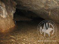12 Nİsan 2010 Sakarya, Pamukova, Kazımiye Köyü, Acısu (Akçay) Mağaraları