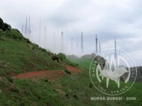 Kaya Çalışması (21-4-2013)